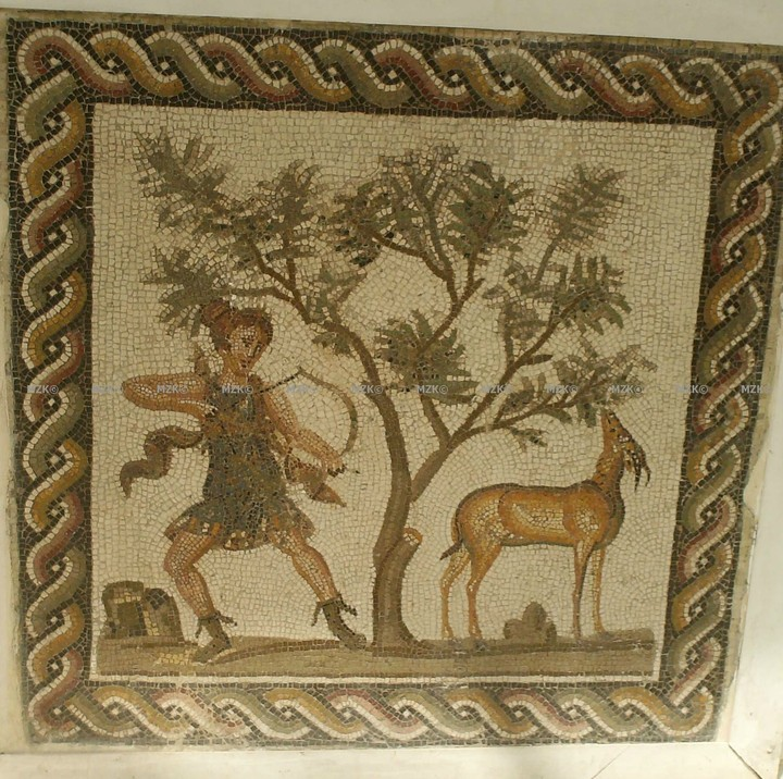 Les animaux dans les mosaïques romaines en Tunisie