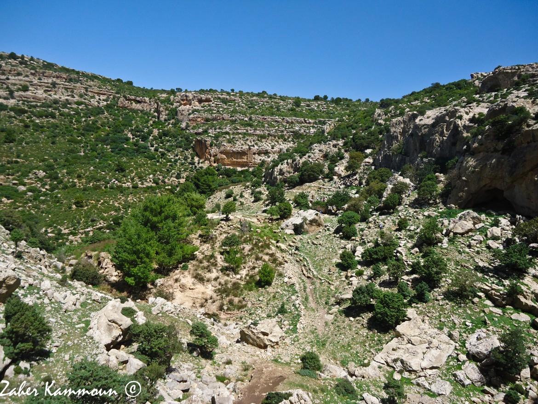 Djebel Serdj
