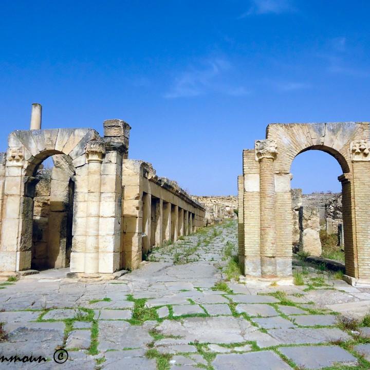 Le site archéologique de Musti