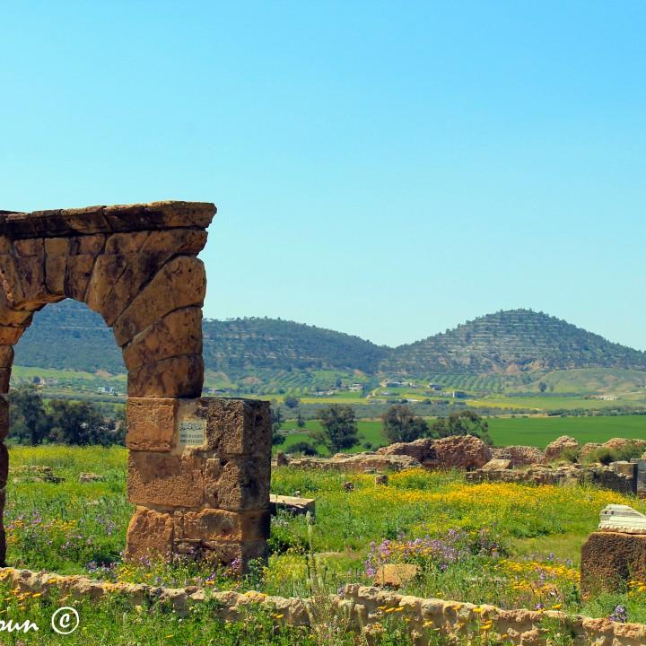 22 sites archéologiques de la Tunisie (deuxième partie)