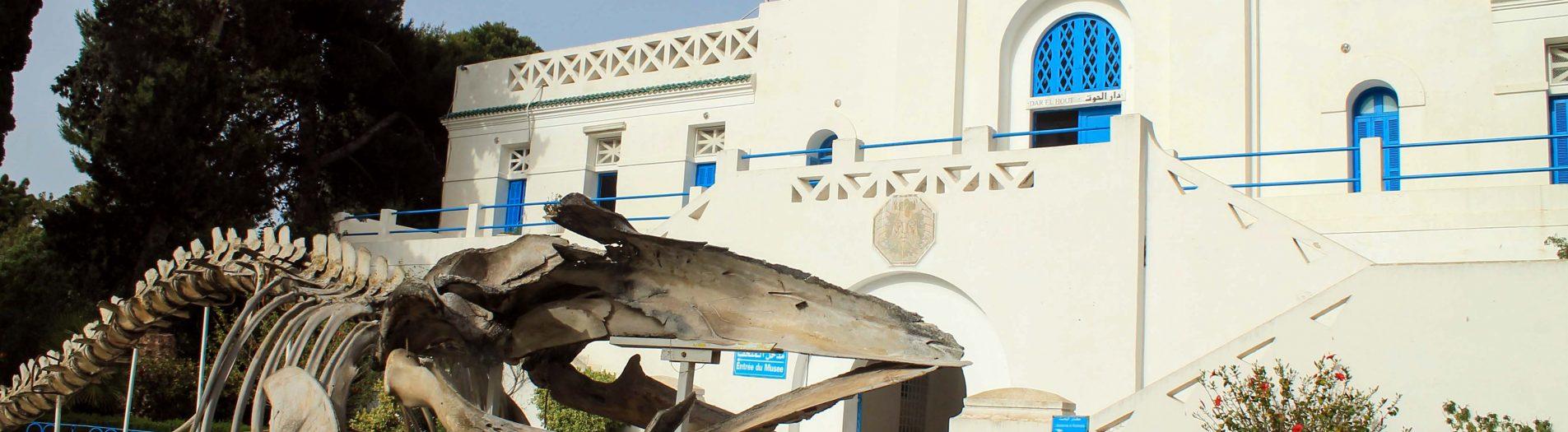 Musée de Salammbo متحف صلامبو
