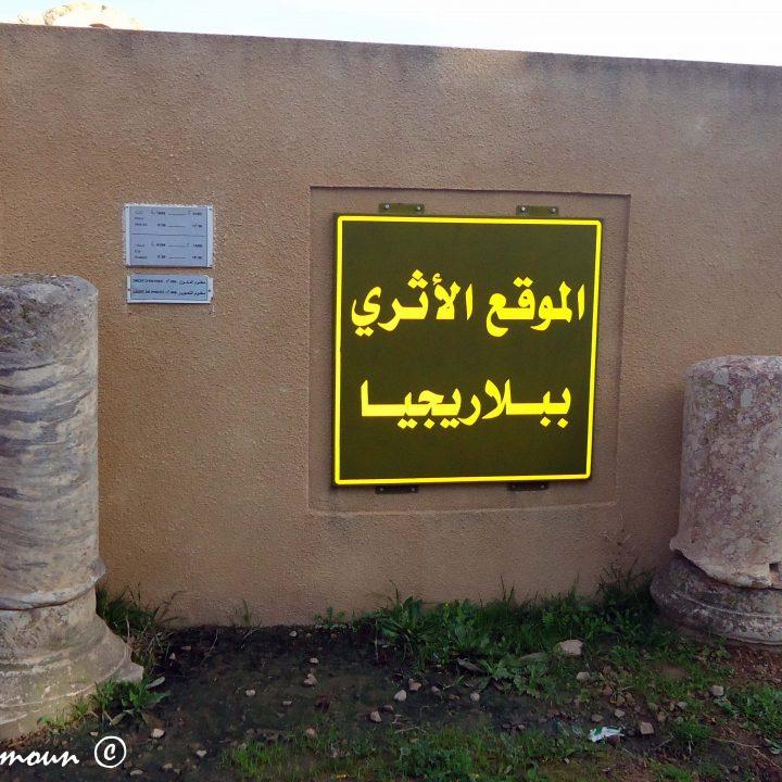 الموقع الأثري ببلاريجيا
