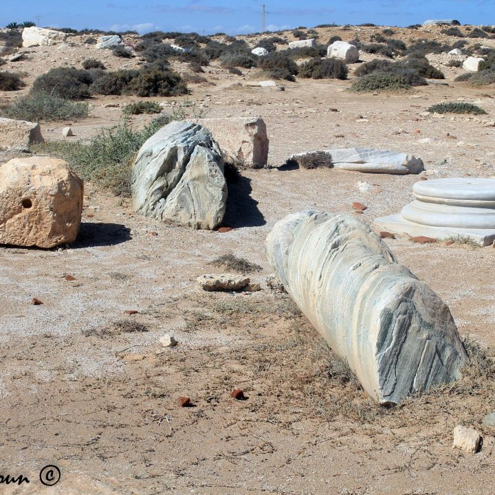 Le site archéologique de Meninx