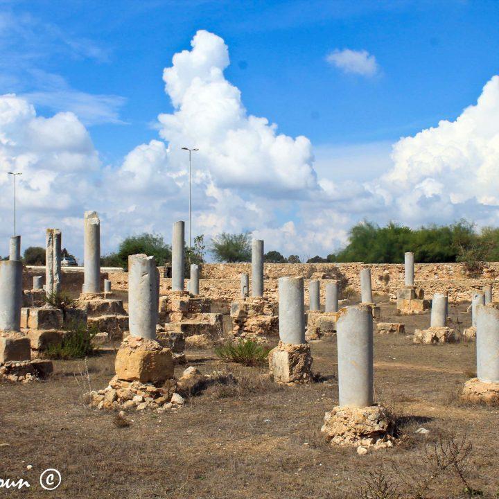 La basilique Damous Karita à Carthage