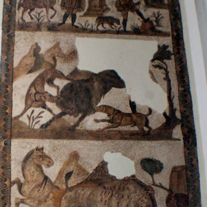 La mosaïque de chasse de Henchir Toungar