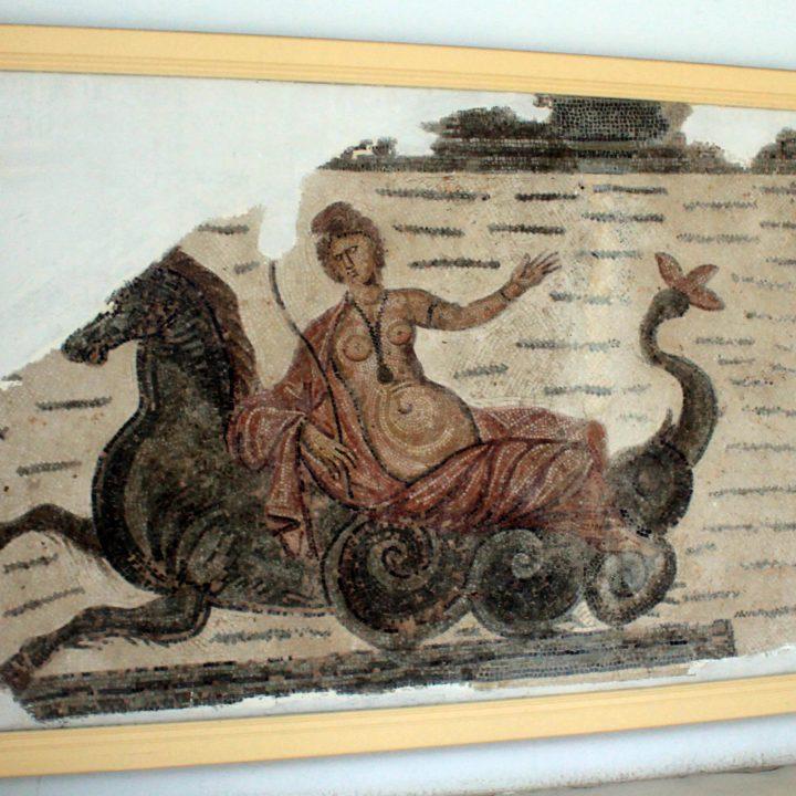 Les mosaïques des thermes de Sidi Mahirsi au Cap Bon