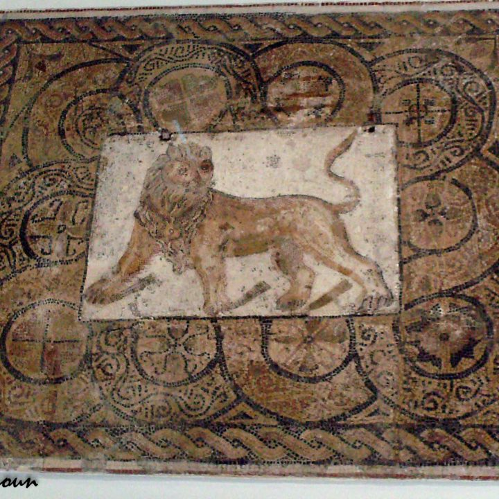 Les mosaïques du site archéologique de Thyna (Sfax)
