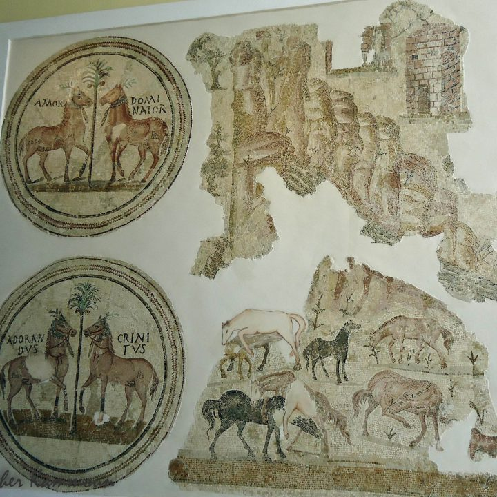 La mosaïque de Sorothus