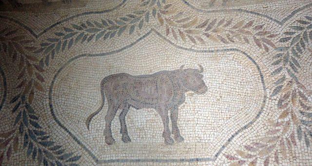 Les mosaïques de la maison d'Africa à el Jem