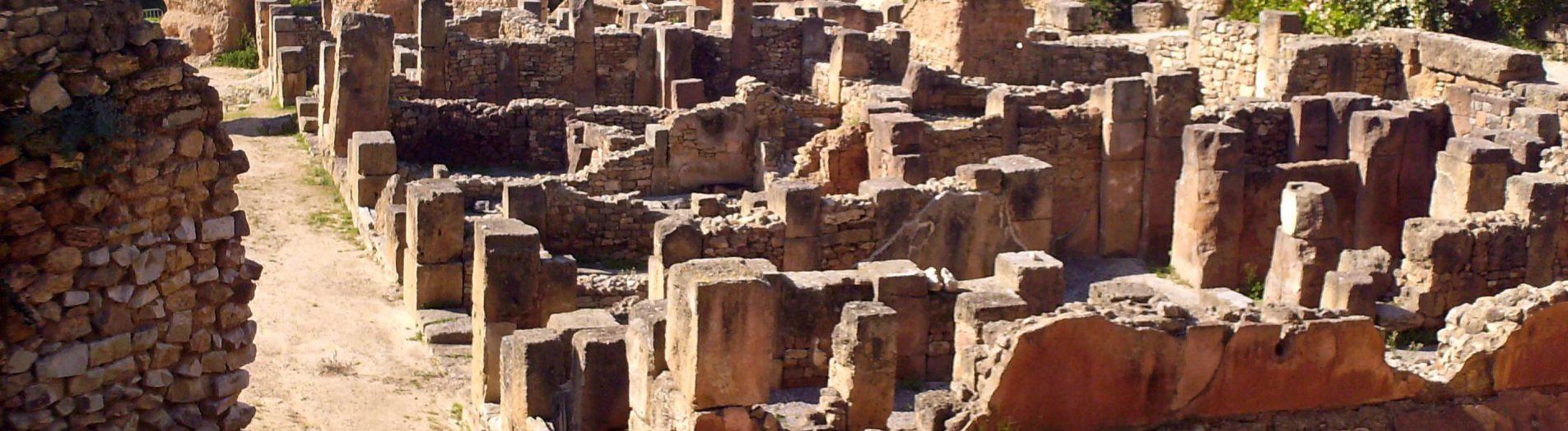 Carthage punique