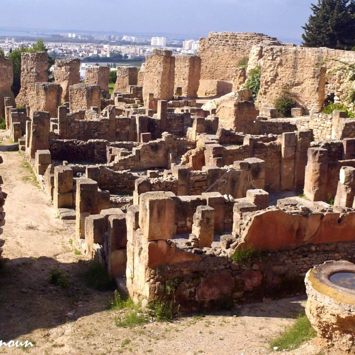 Carthage punique