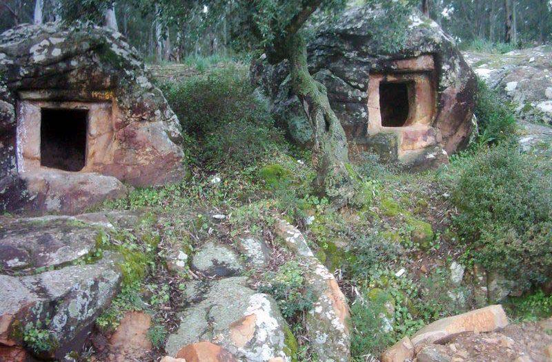La préhistoire en Tunisie