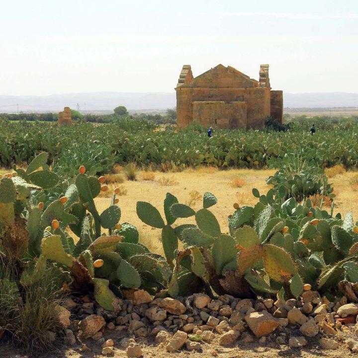Le site archéologique de henchir Dharraoui