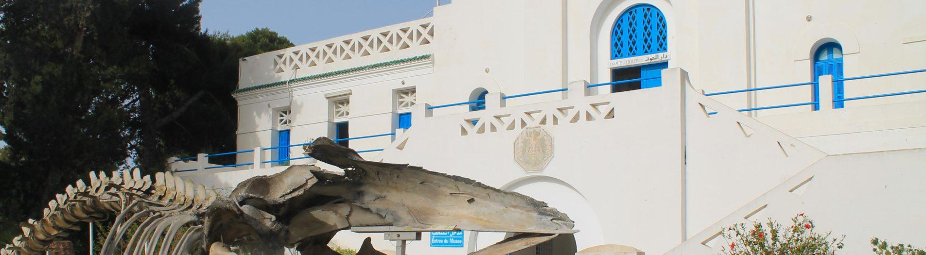 Musée océanographique de Salammbo