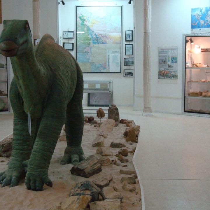 Les vertébrés  fossiles du Sud tunisien