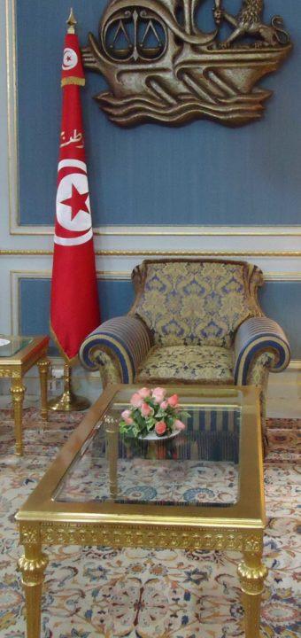 Le palais présidentiel de la Tunisie القصر الرئاسي بتونس
