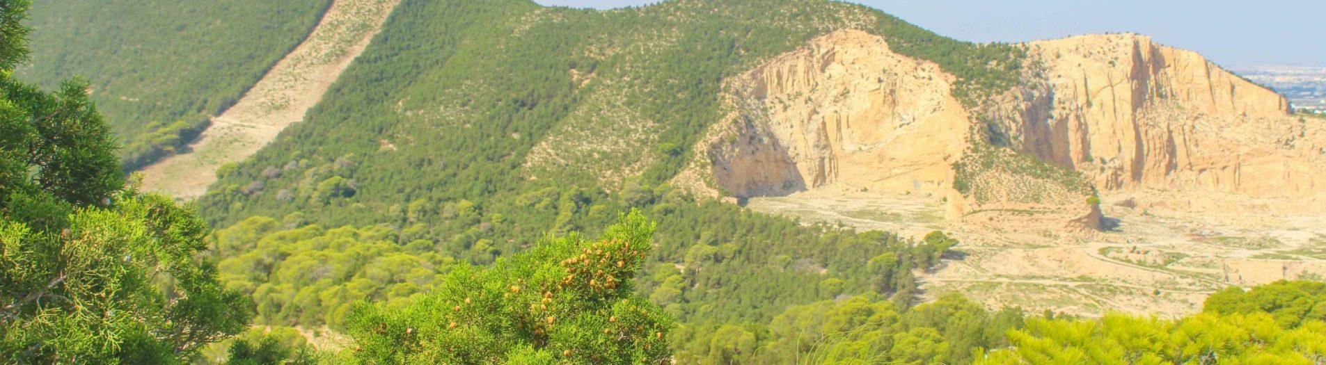 Le parc national de Boukornine