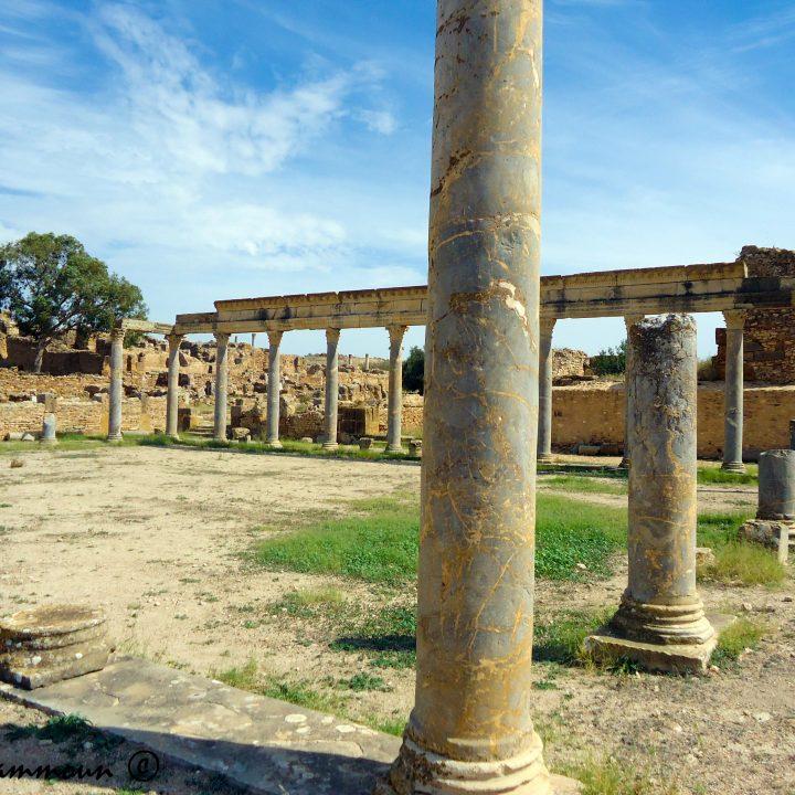 Les lieux de sociabilité et des spectacles scéniquesromains en Tunisie