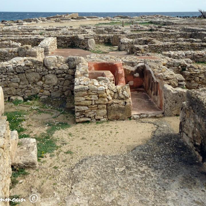 Monumenti e Siti Del Cap Bon