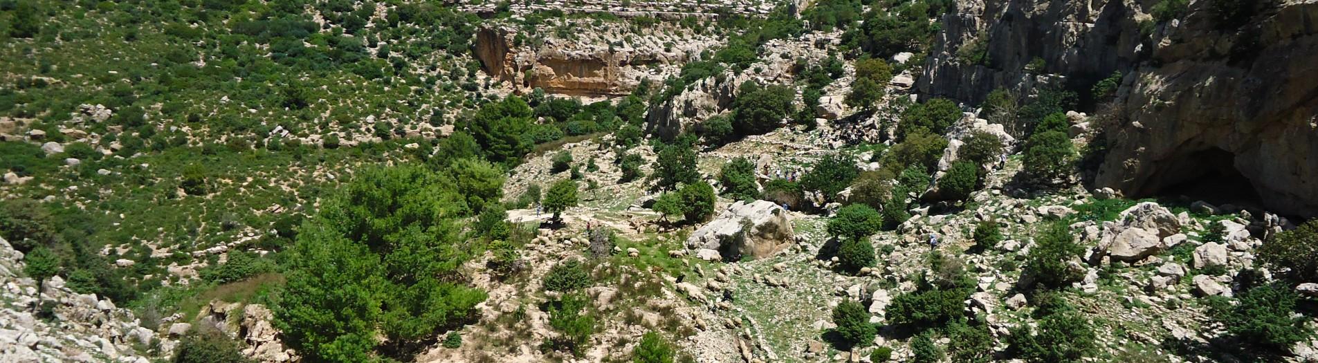 Djebel Serdj Tunisie