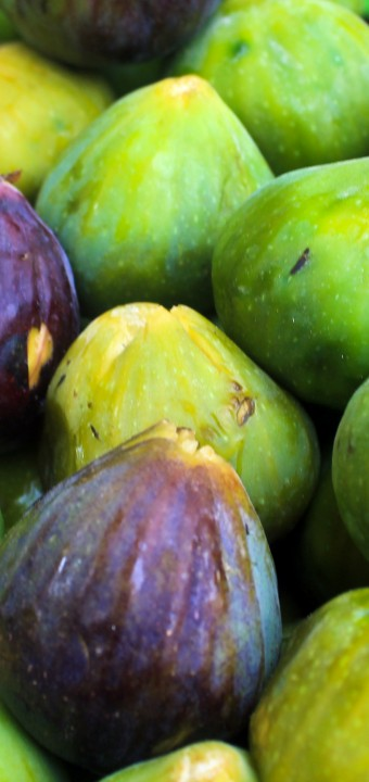 Tunisian Fruits