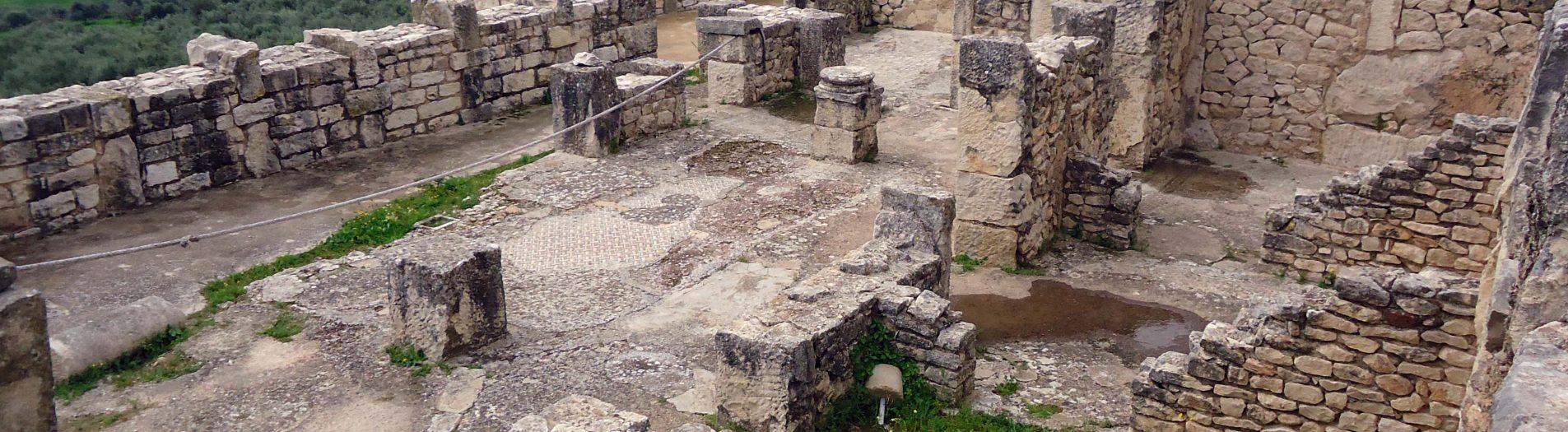 L'architecture domestique en Tunisie romaine
