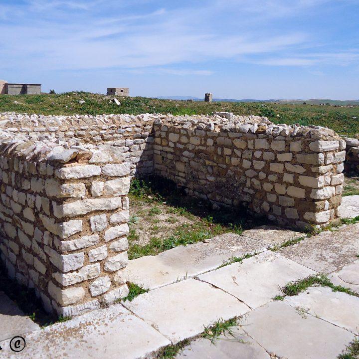 Les marchés romains en Tunisie