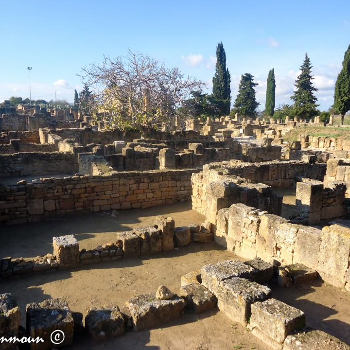 Le site archéologique d'Utique