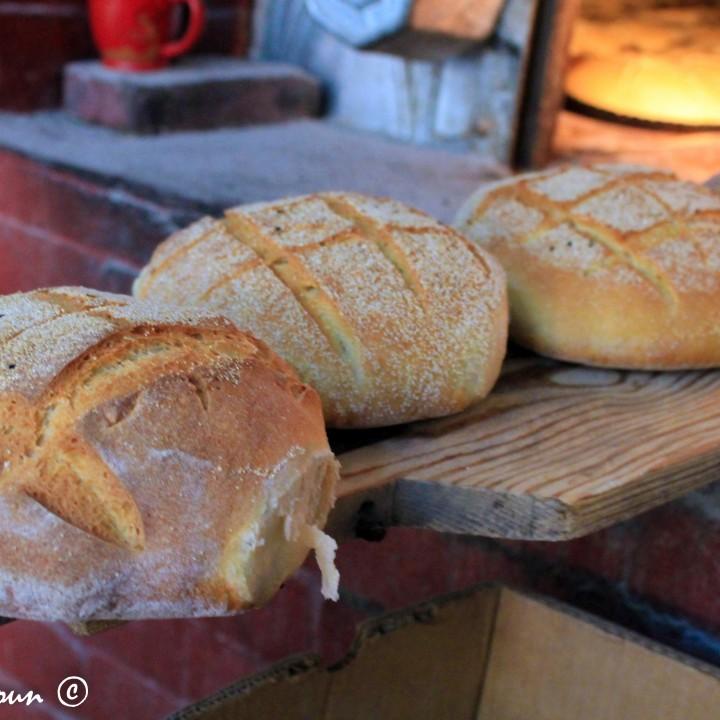الخبز في صفاقس... يحتفل بيومه العالمي