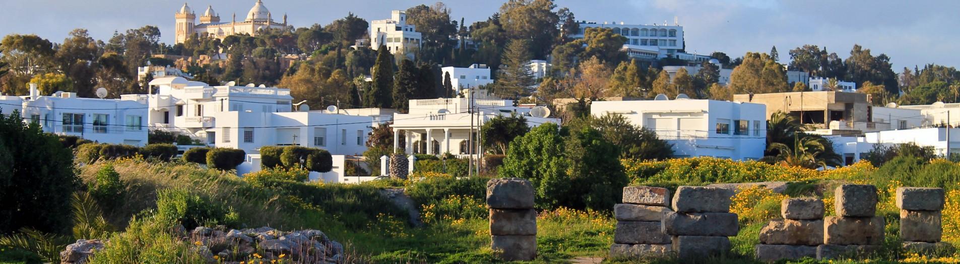 Carthage dans les vidéos et les documentaires
