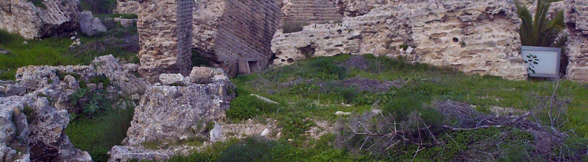 Le monument circulaire de Carthage