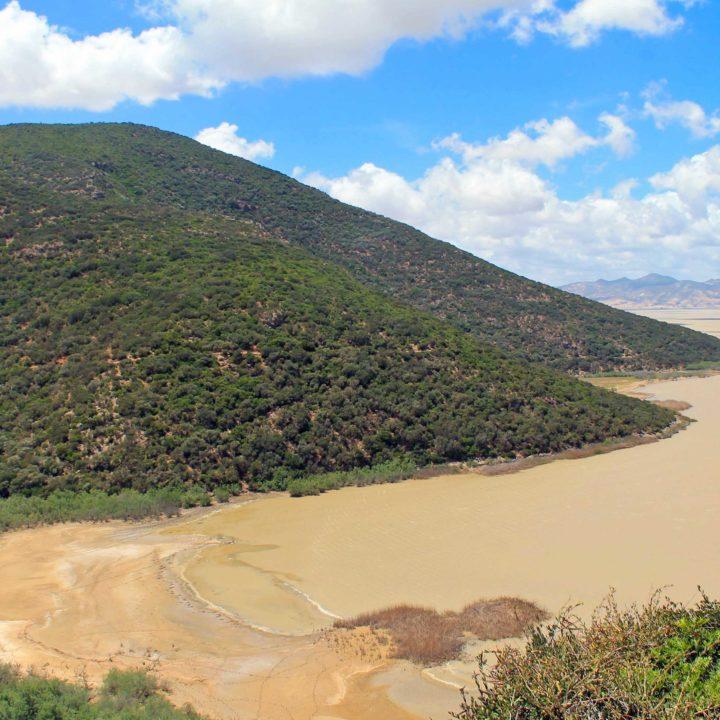 Le parc national de l'Ichkeul الحديقة الوطنية باشكل