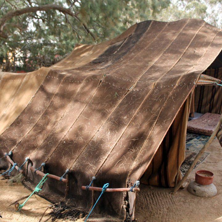 تراث الصحراء التونسية من خلال متحف الصحراء بدوز