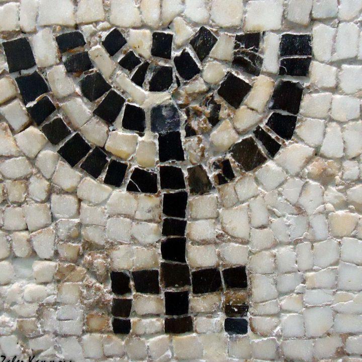 La synagogue de Naro Hammam Lif