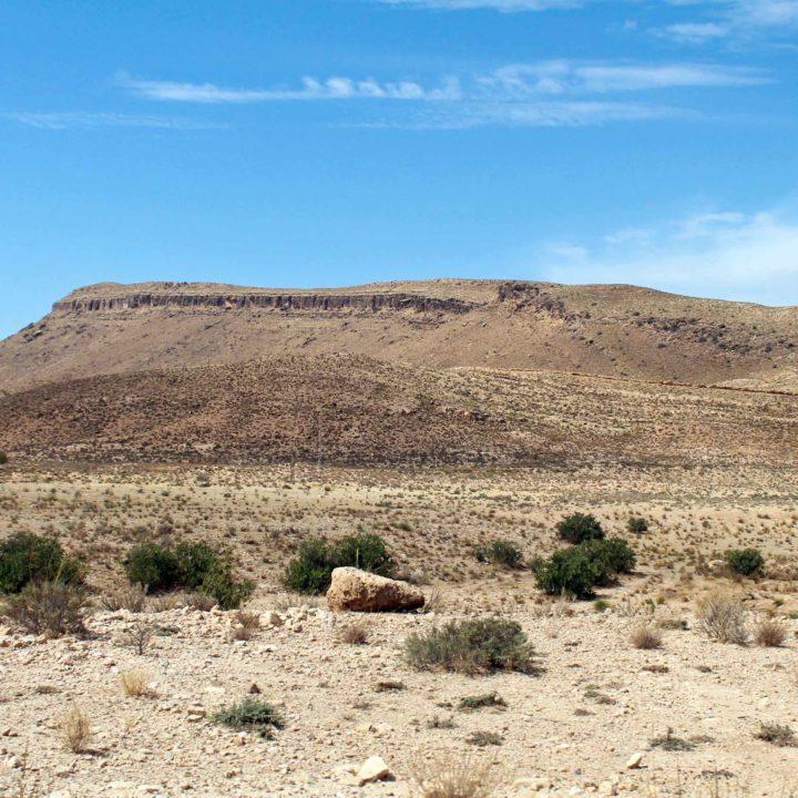 Sidi Bouzid سيدي بوزيد