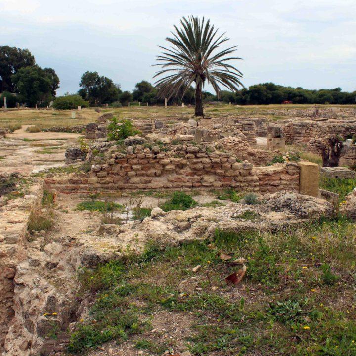 Le site archéologique de Pupput