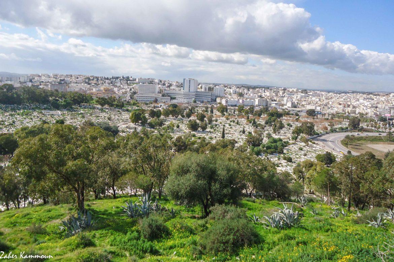 مقبرة الجلاز من جبل التوبة